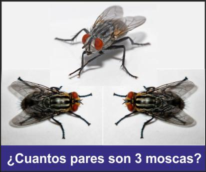 cuantos pares osn tres moscas