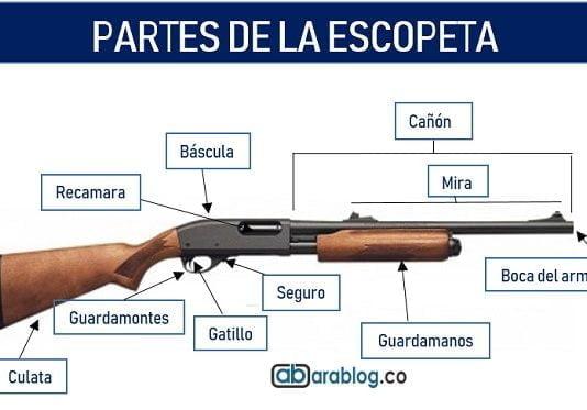 partes de la escopeta