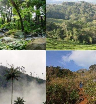 ecosistemas de colombia