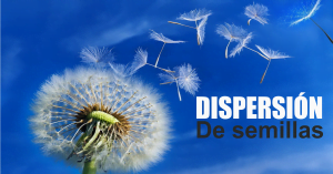 Dispersion de semillas