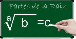 elementos de la raiz matematica