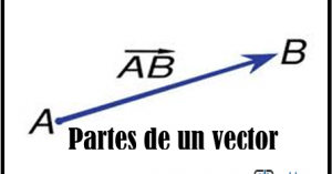 partes del vector