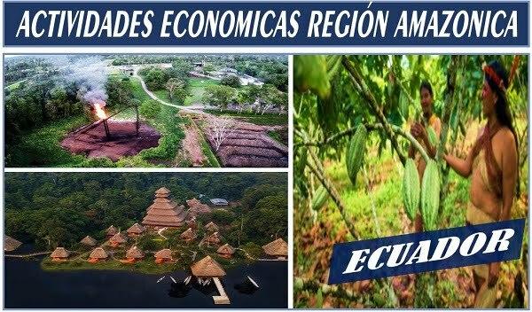 economia de la amazonia ecuatoriana
